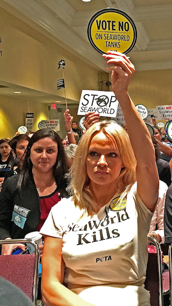 Actress and animal rights activist Pamela Anderson speaks out against SeaWorld.Photo by Michael Reppy