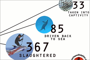 Check the Status of the Taiji Dolphin Killing through the first three months of the Season